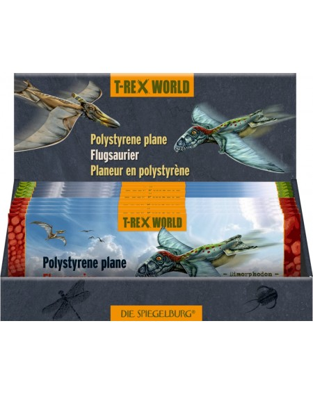 Zweefvliegtuigje T-Rex World