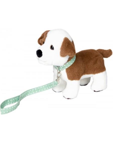 Puppy Finni