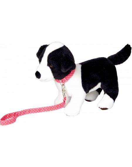 Puppy Jana